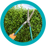 espoir 62 jardinage
